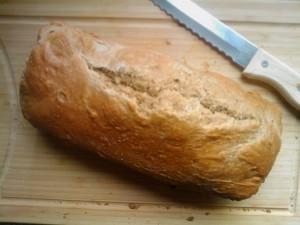 vers gebakken spelt brood